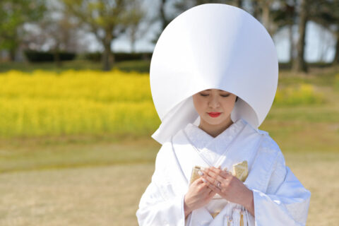 和装 白無垢 洋髪綿帽子 打掛 花嫁