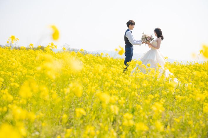 フォトウェディング 福島潟 新潟 新発田 和婚 花嫁衣裳 ウェディングドレス ロケーションフォト 菜の花