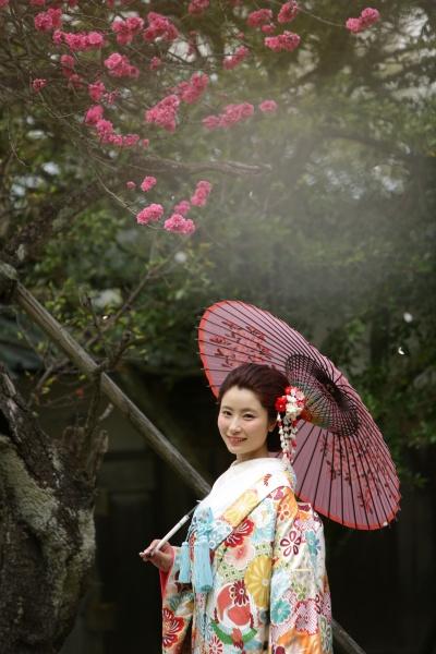 花 和傘 色打掛 日本の花嫁